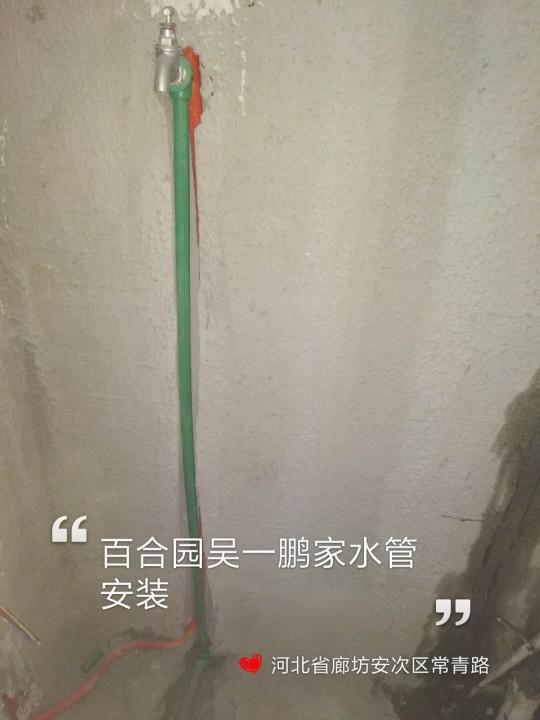 爱空间厨卫墙砖完工_2826178