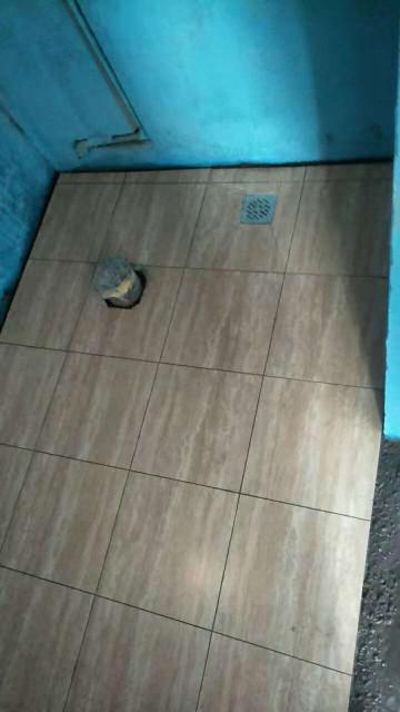 爱空间厨卫墙砖完工_3103663