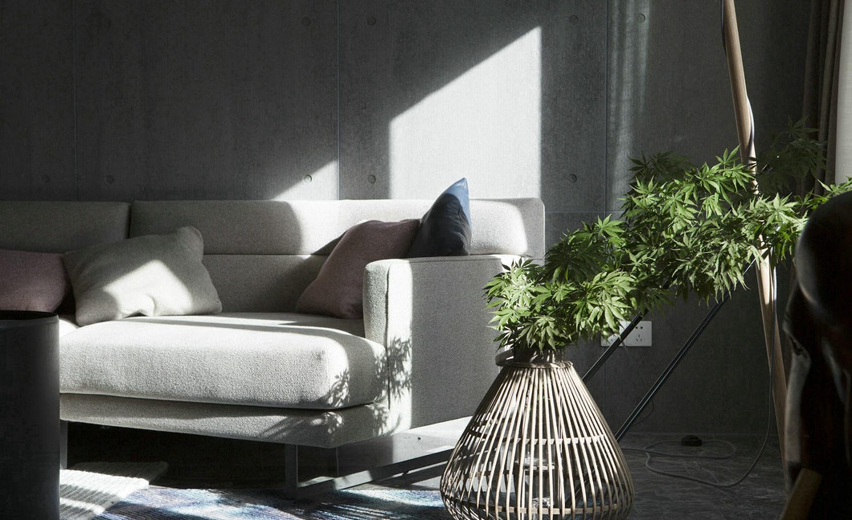 灰色的布艺沙发简单大方,沙发旁边搭配绿色植物点缀真个屋子,清新亮丽
