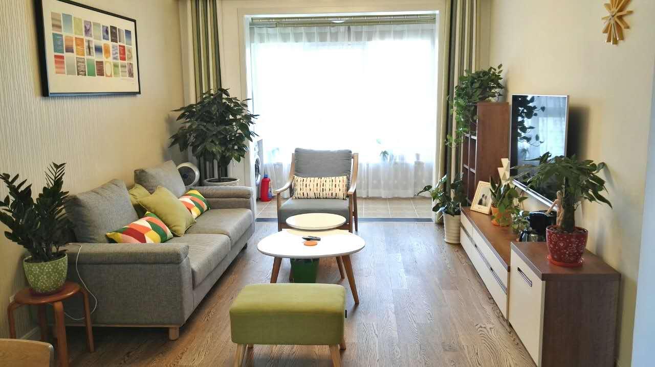 摆放绿植,让空间充满生机与活力。
