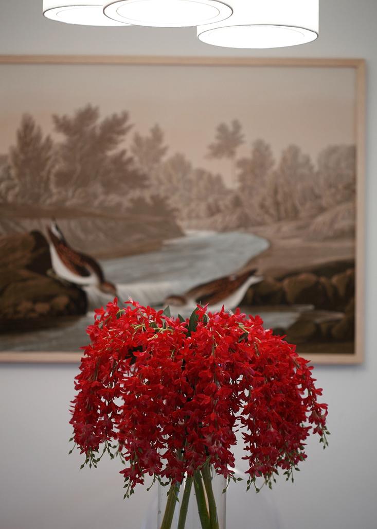 素色世界,用一束红花,点亮一下居室吧!