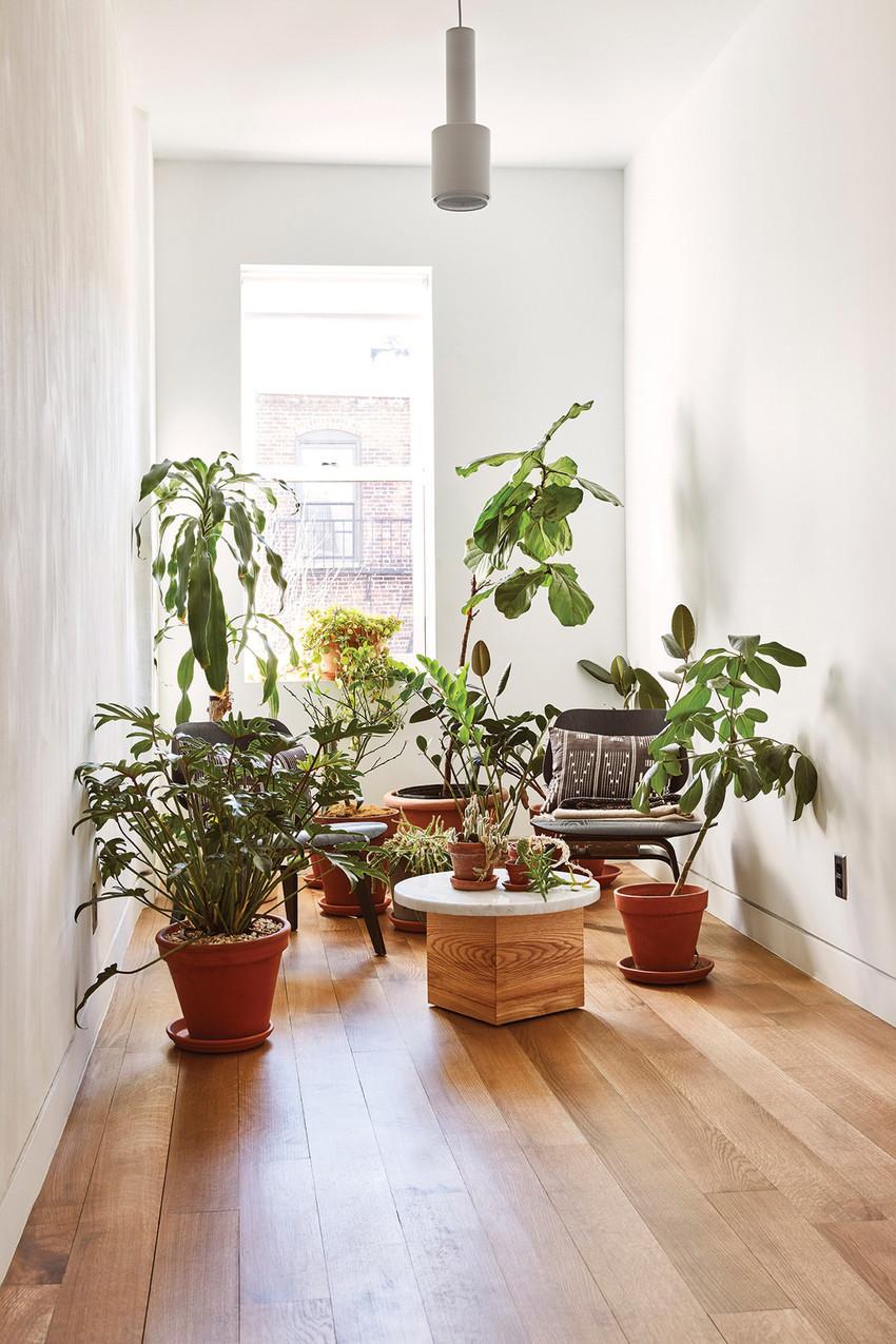 这里还有一个小小的房间,物尽其用的同时也要留一些余地,直接拿来做花房也是很美的呢,诗与远方无需去寻找