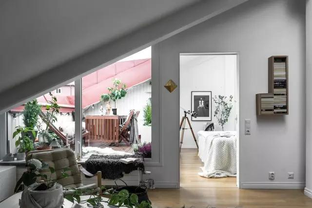 白天是清新的花园,大量的植物将红白色房屋衬托的各位美观,足够充裕的空间,摆上小桌椅,组成一个休闲空间