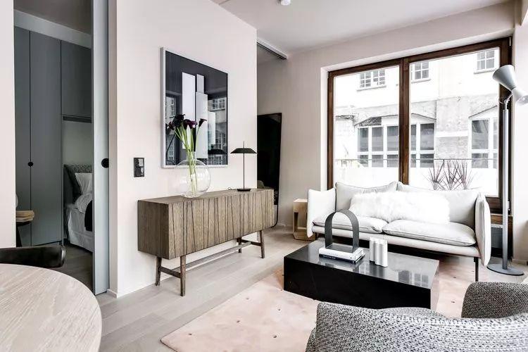 由于空间有限,设计师决定将社交空间作为公寓内的主要空间,