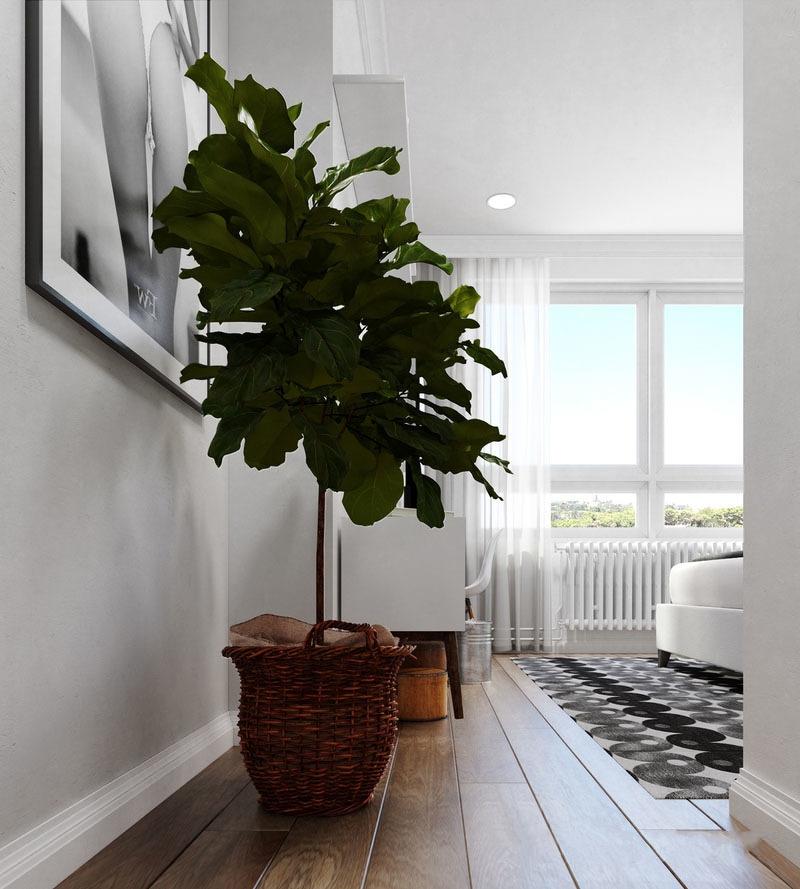 大空间卧室让休憩空间更舒适,墙角的绿植给居室多了一点生机